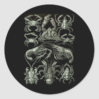 Crabs & Lobsters Classic Round Sticker