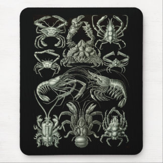Crabs & Lobsters Mouse Pad