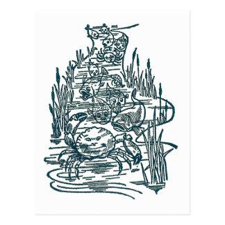 Crabs, Salmon and Whitebait in Stream Postcard