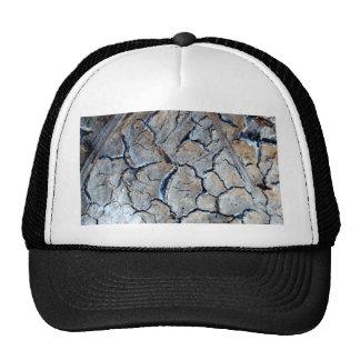 crack earth trucker hat