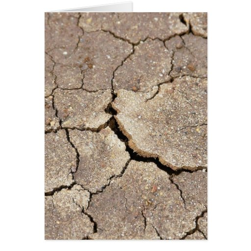 Cracked And Dried Mud At The Beach Greeting Card