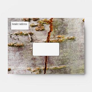 Cracked Birch Bark Envelope
