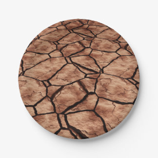 Cracked Earth Paper Plate