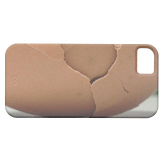 Cracked Egg Iphone5 /5s Case