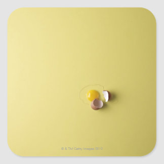cracked egg on yellow background square sticker