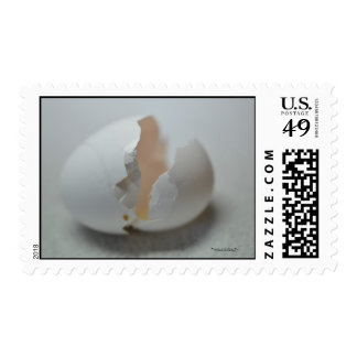 Cracked egg shell. postage
