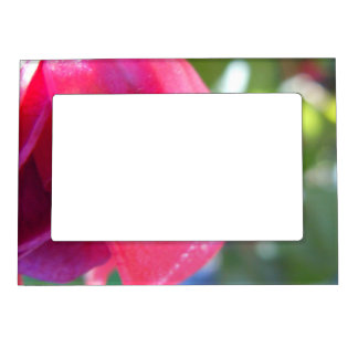 Cracked Fuschia Magnetic Picture Frame
