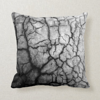 Cracked Pillow