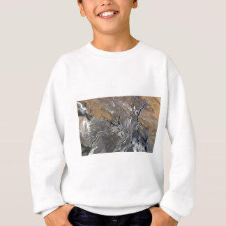 CRACKED SALT LAKE PHOTOGRAPHY modern art Sweatshirt