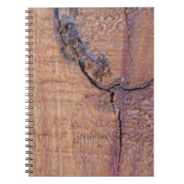 Cracked Wood Notebook
