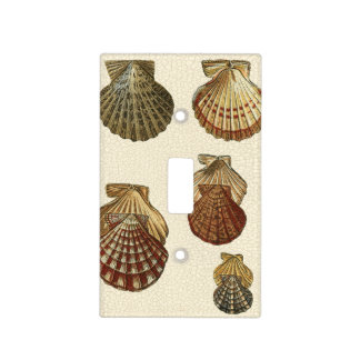 Crackled Antique Shells Light Switch Cover