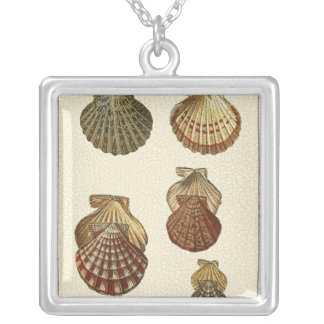 Crackled Antique Shells Silver Plated Necklace