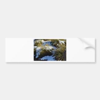 CRADLE MOUNTAIN ST CLAIR NATIONAL PARK TASMANIA BUMPER STICKER