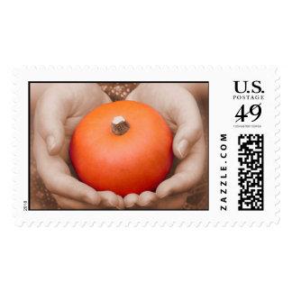 Cradled Pumpkin Postage
