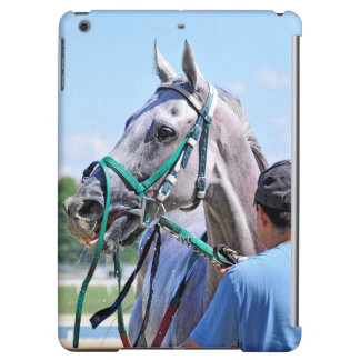 Crafty Concorde iPad Air Covers