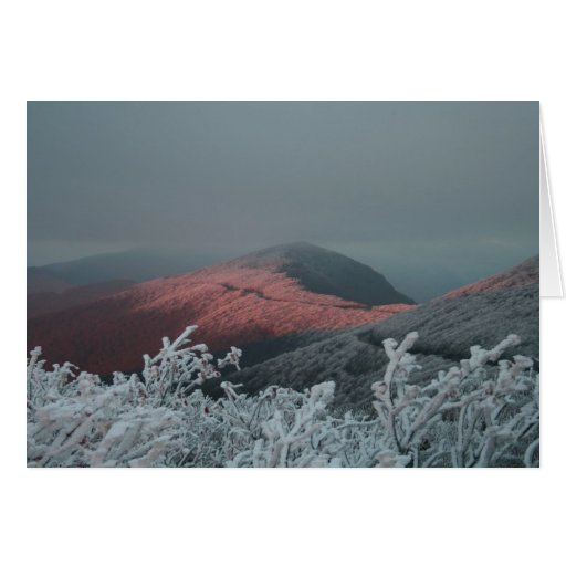 Craggy Gardens Greeting Cards