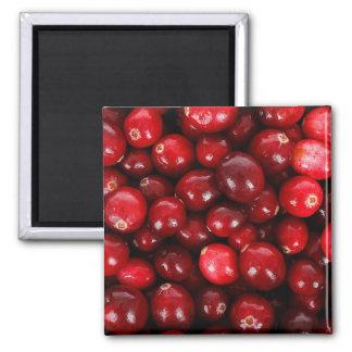 Cranberries 2 Inch Square Magnet