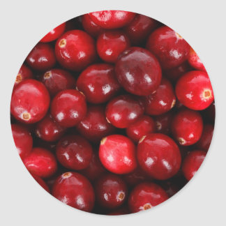 Cranberries Classic Round Sticker