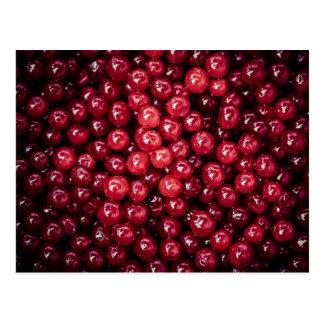Cranberries Post Card