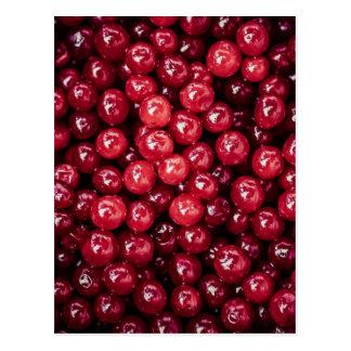 Cranberries Post Cards