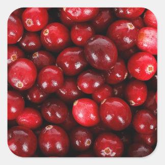Cranberries Square Sticker