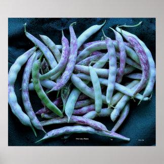 Cranberry Beans Print