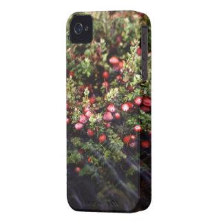 Cranberry Bog Case-Mate iPhone 4 Case