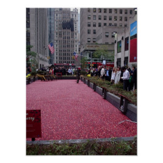 cranberry bog in the middle of NYC Poster