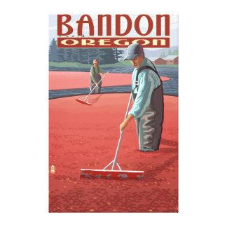 Cranberry Bogs Harvest - Bandon, Oregon Canvas Print