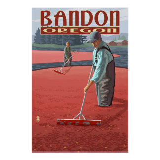 Cranberry Bogs Harvest - Bandon, Oregon Poster