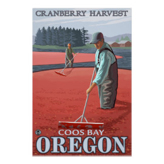 Cranberry Bogs Harvest - Coos Bay, Oregon Poster