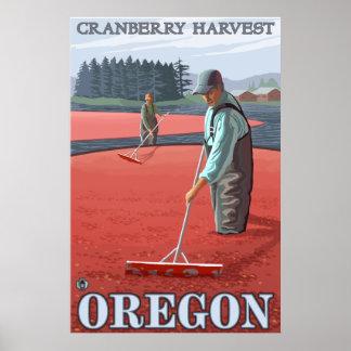 Cranberry Bogs Harvest Poster