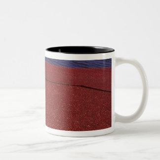 Cranberry Harvest, Middleboro, MA, USA Two-Tone Coffee Mug