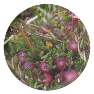Cranberry Party Plate