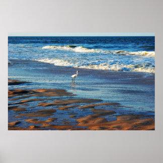 Crane Atlantic Ocean Poster
