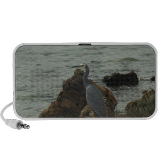 crane by the sea PC speakers