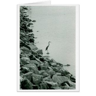 Crane? Card