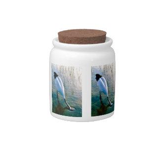 Crane feeding in shallow water candy jar