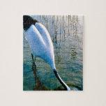Crane feeding in shallow water jigsaw puzzle