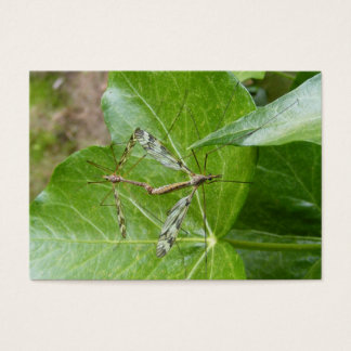 Crane Flies ~ ATC Business Card