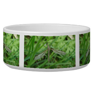 Crane Fly Dog Bowl