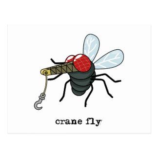 Crane Fly Postcard
