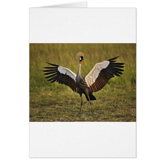 crane.jpg card