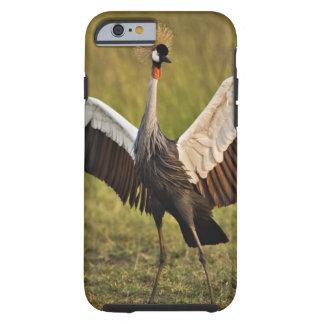 crane.jpg iPhone 6 case
