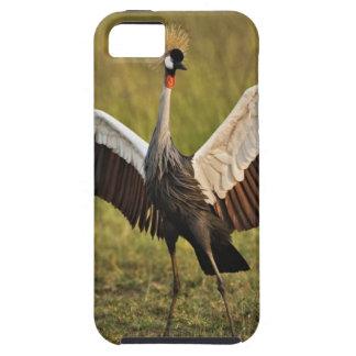 crane.jpg iPhone SE/5/5s case