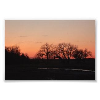 """Crane Migration"" Photo Art"