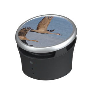 crane bluetooth speaker