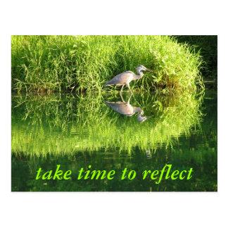 Crane Reflection Postcard