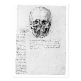 Cráneo 002 de Leondardo da Vinci Postal