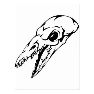 Cráneo animal postales
